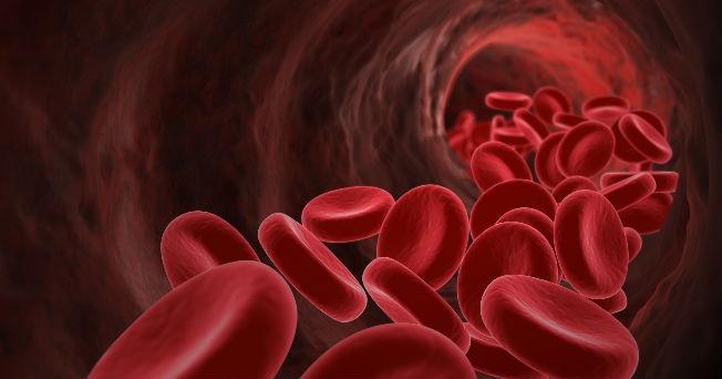 flujo sanguineo