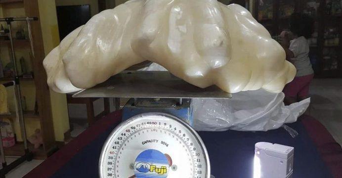 Una perla de 34 kilos espera la certificacion de las mas grande del mundo